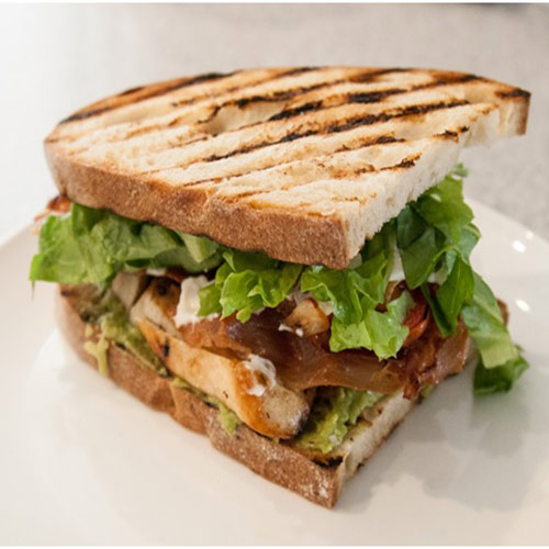 Grilled Chicken Sandwitch